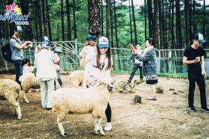 Tour tham quan sở thú Zoodoo tại Đà Lạt
